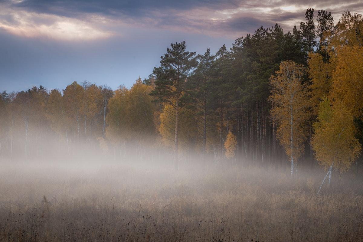 Туман представляет собой то же самое облако, которое мы привыкли видеть в небе. Единственное различие – туман простирается у поверÑности земли.