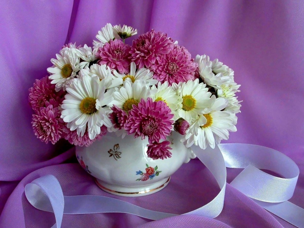новый, фото цветов букетов на хорошего настроения помощи вашего