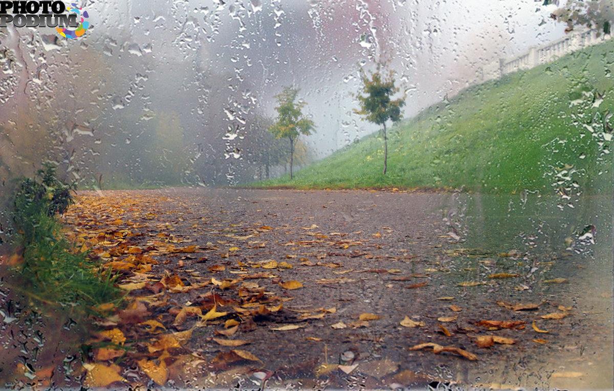 Наступила осень с нескончаемыми дождями меня