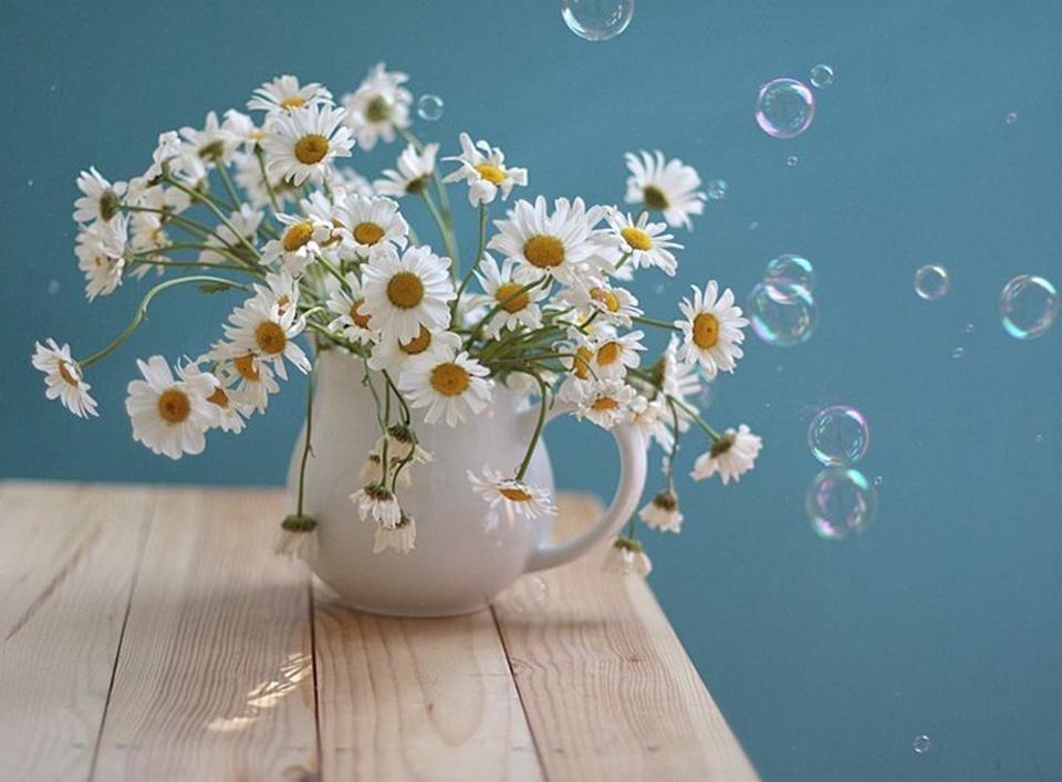 Доброе утро очень красивые картинки с ромашками, поздравлениями днем