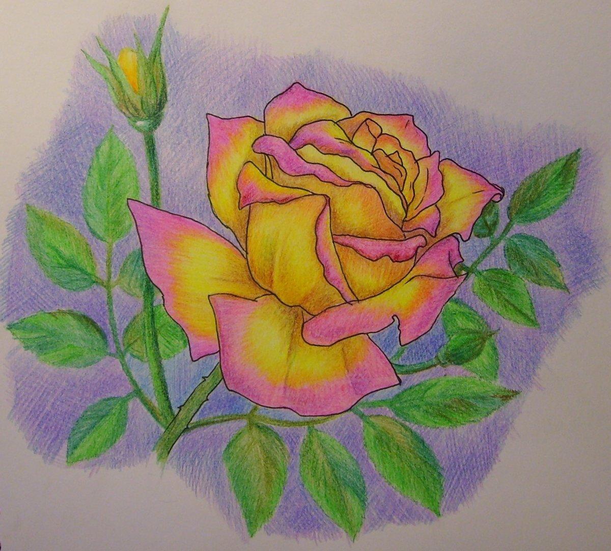 Открытке, открытка на др маме рисунок