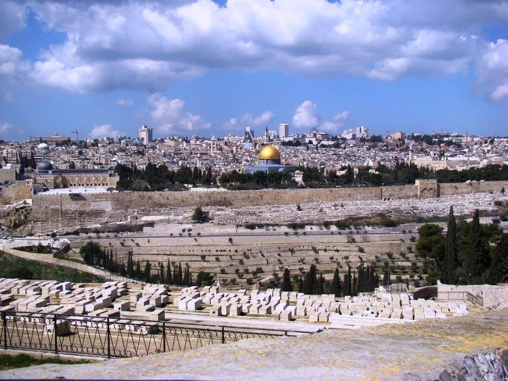 воронковидные либо фото иерусалима сегодня травы можно