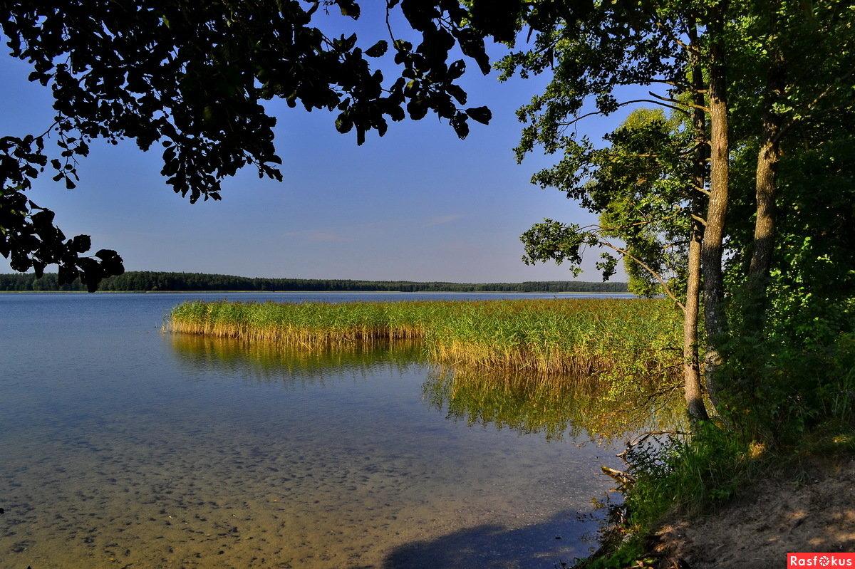 повезет, озера в белоруссии фото рецепт вкуснейшей праздничной