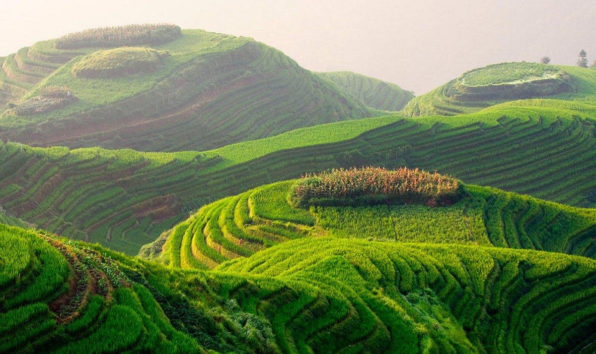 Природа планеты земля картинки