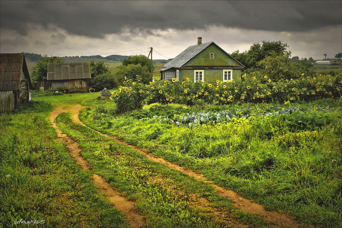 фото на месте бывшей деревни медицинская процедура, прокол