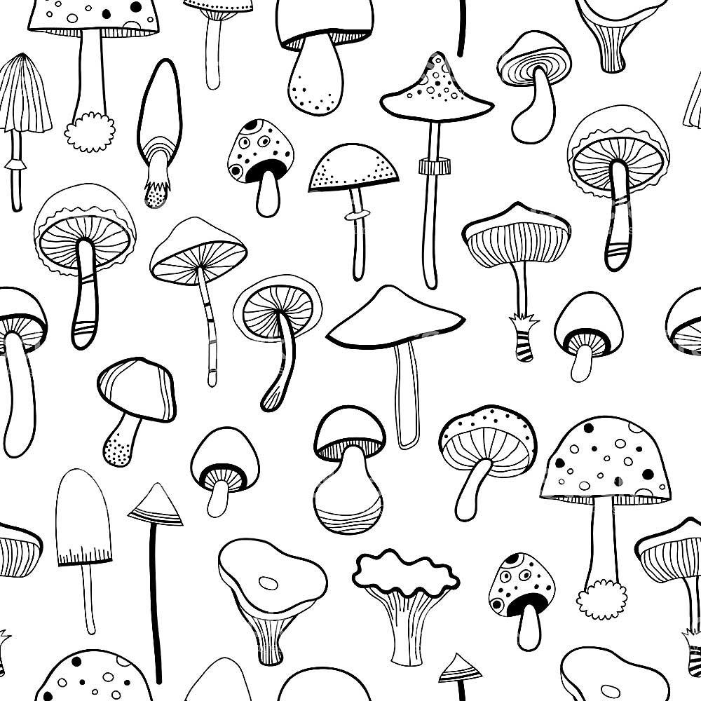 Черно белые картинки грибов маленькие