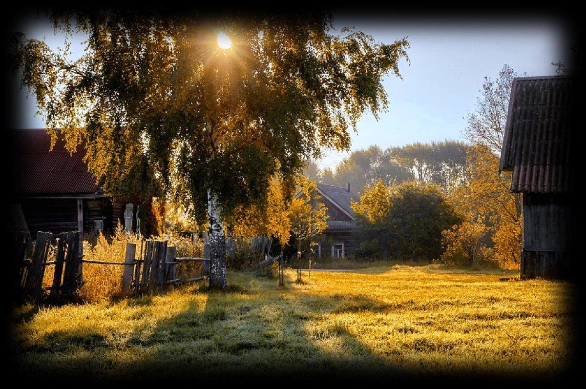 Картинки с видом деревни