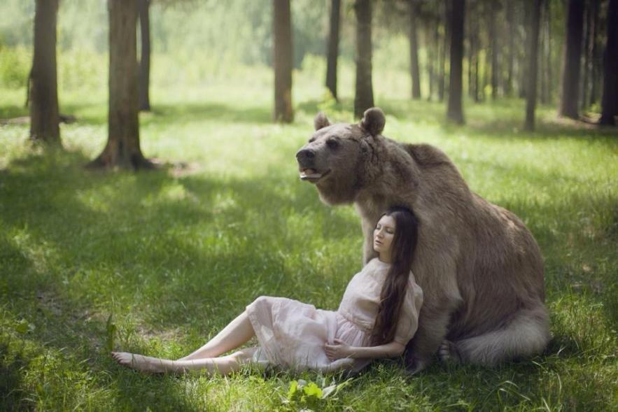 Жизнь в образе животных фото
