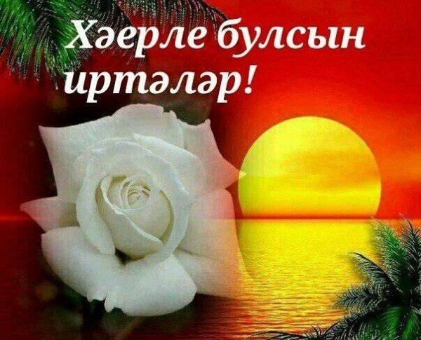 хэерле иртэлэр картинкалар анимация на татарском тому
