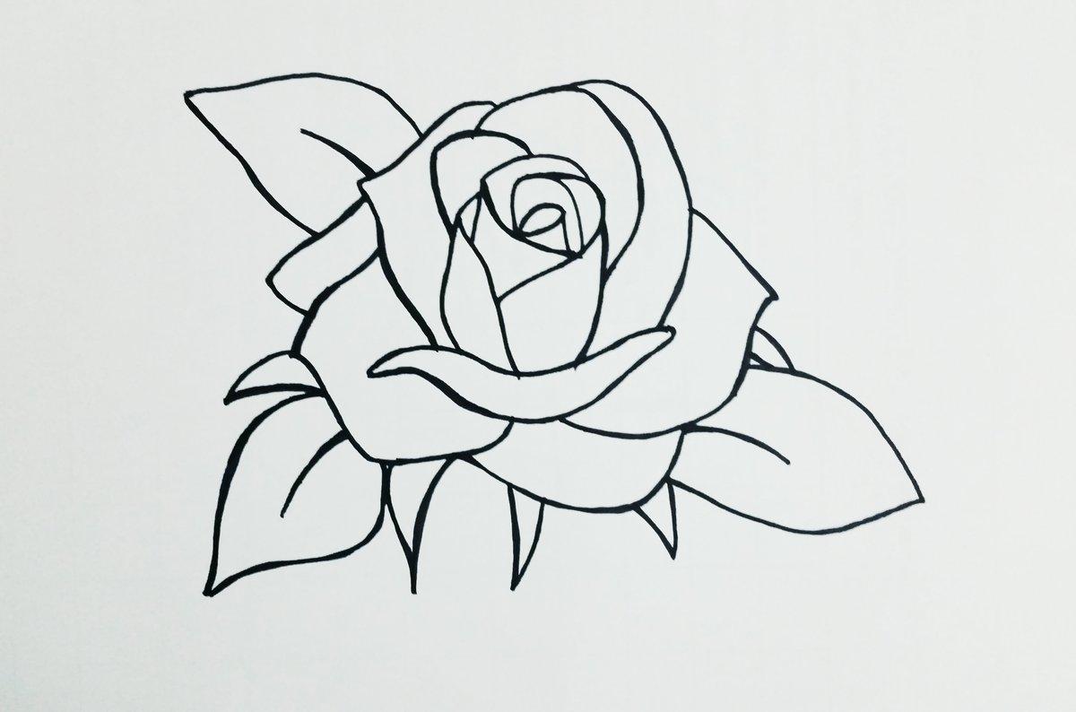 Рисунки карандашом легкие и красивые цветы
