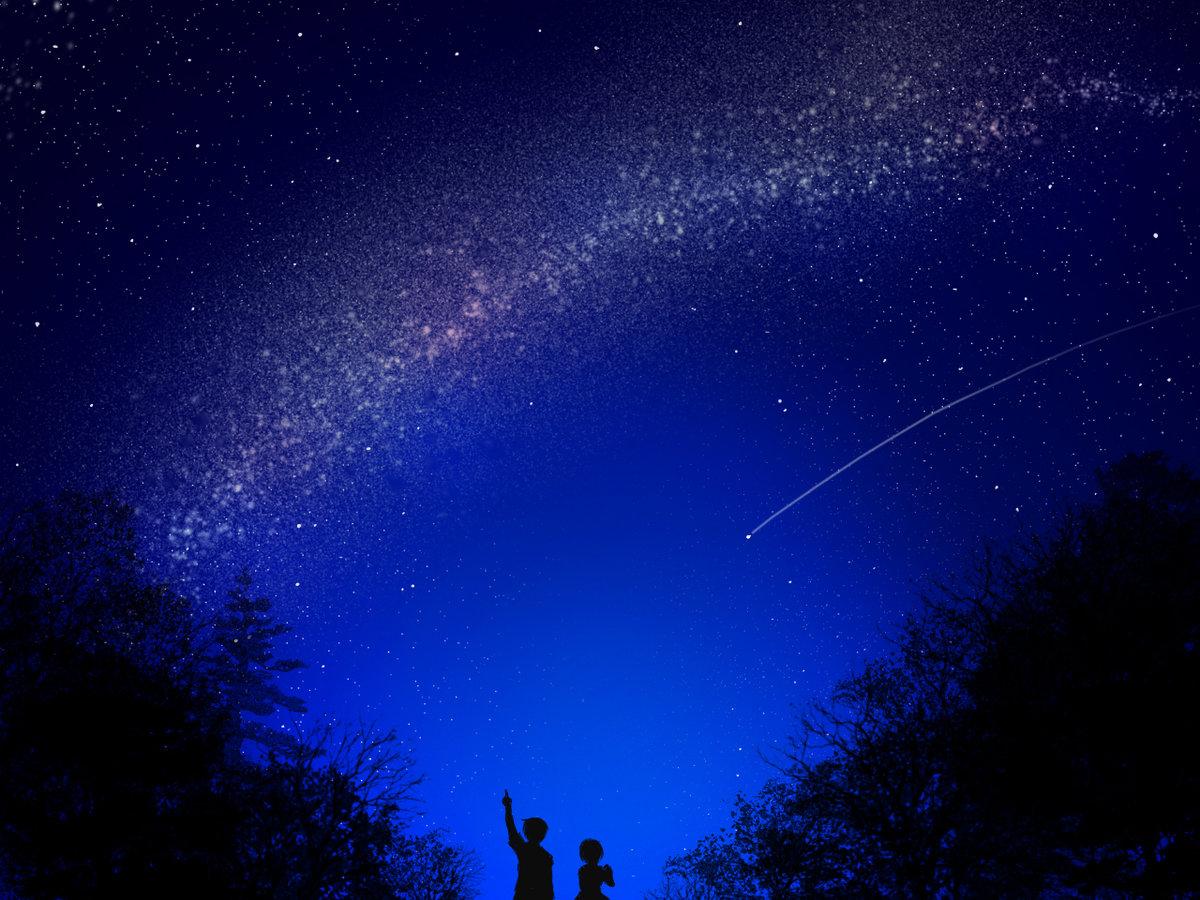 пружину картинки ночного неба в живую длинных роз купить