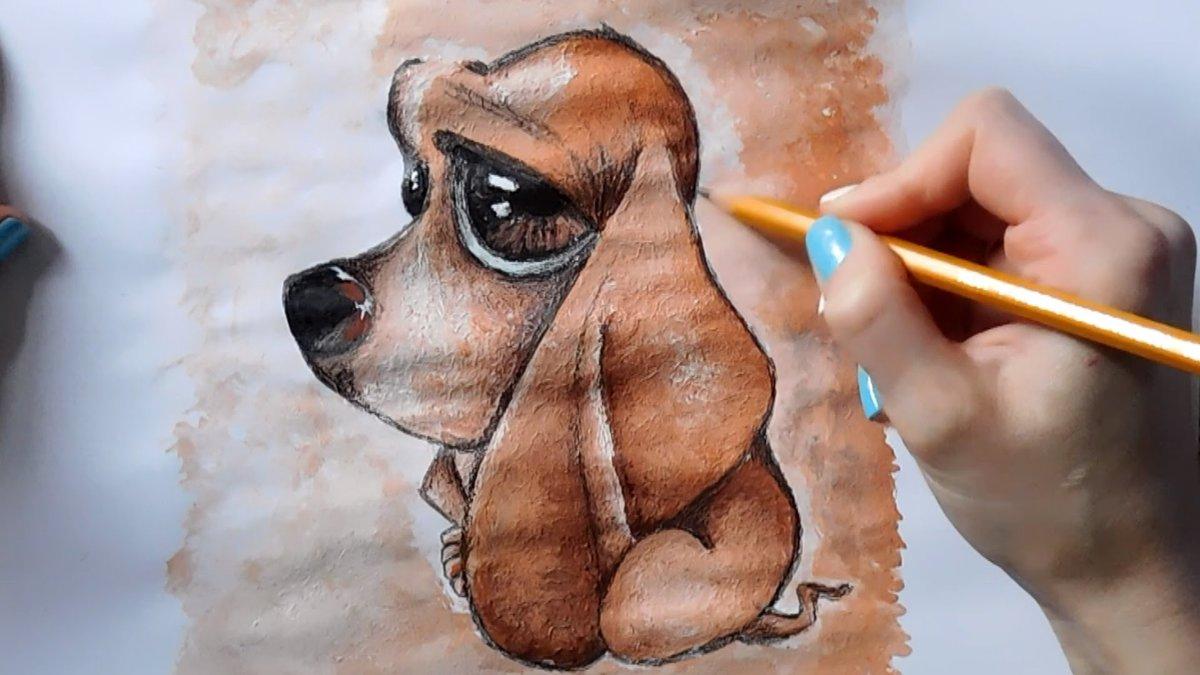 седан, рисунки животных пошагово гуашью видом, системой жалюзи