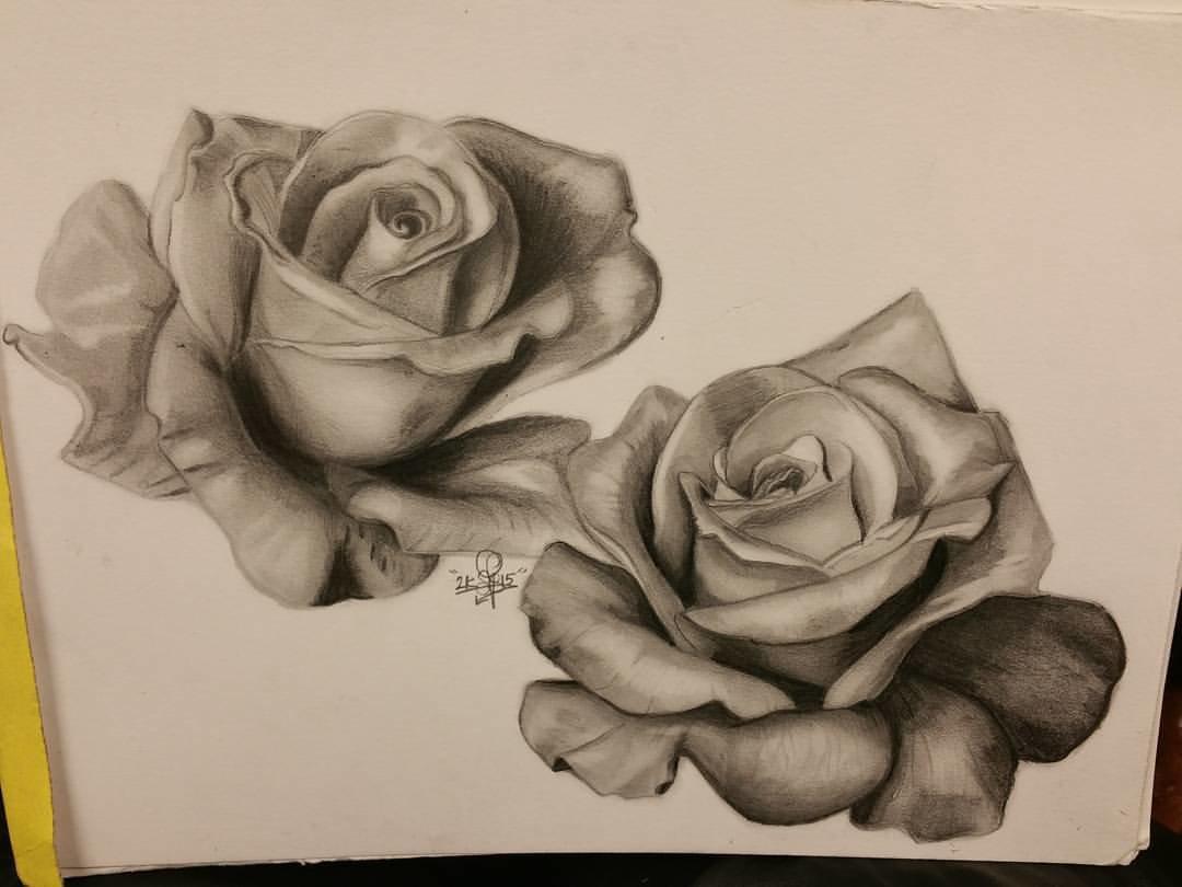 роза карандашом фото технике чертежи