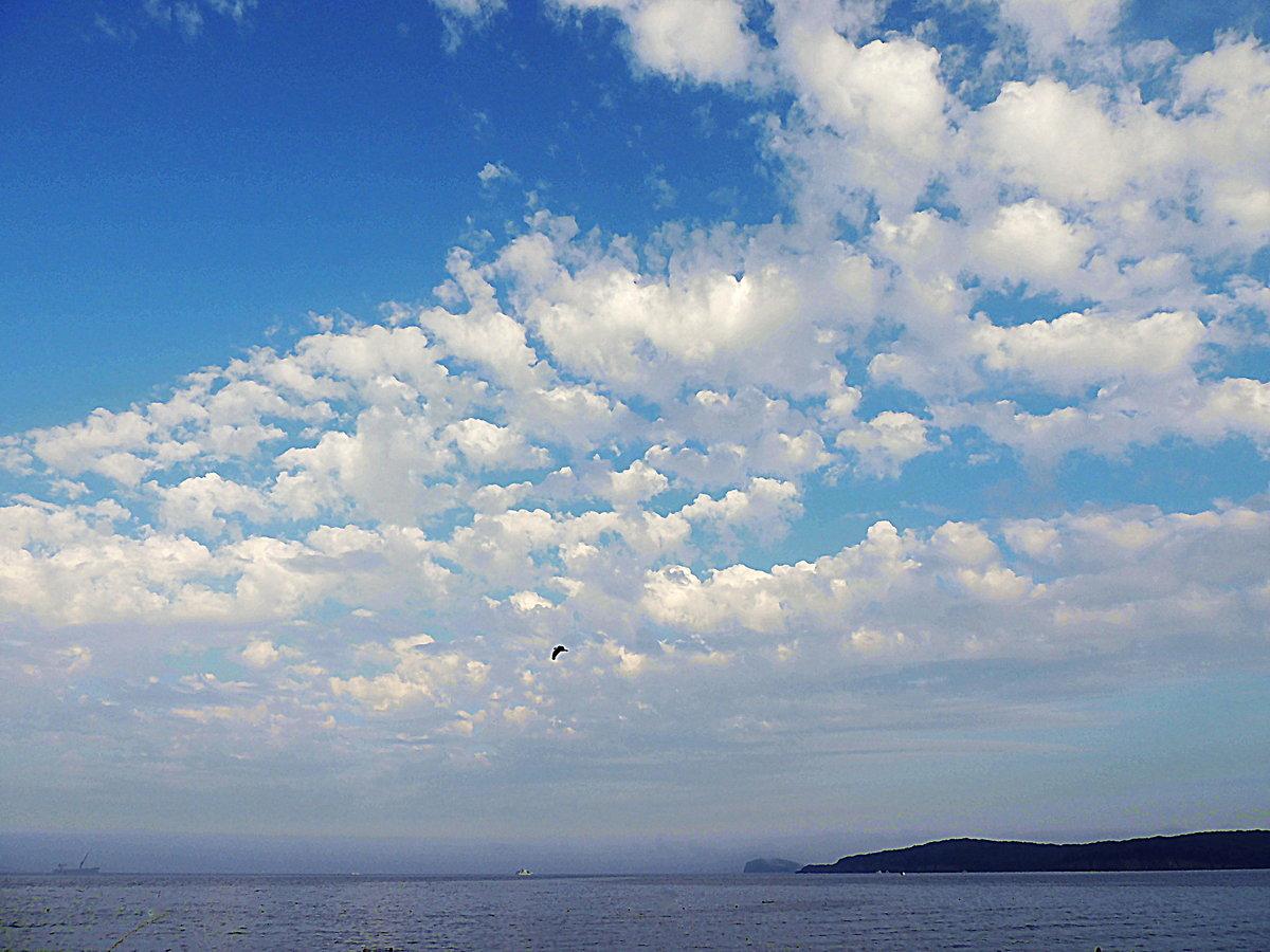 если как сфотографировать облака над головой рододендрон переводится