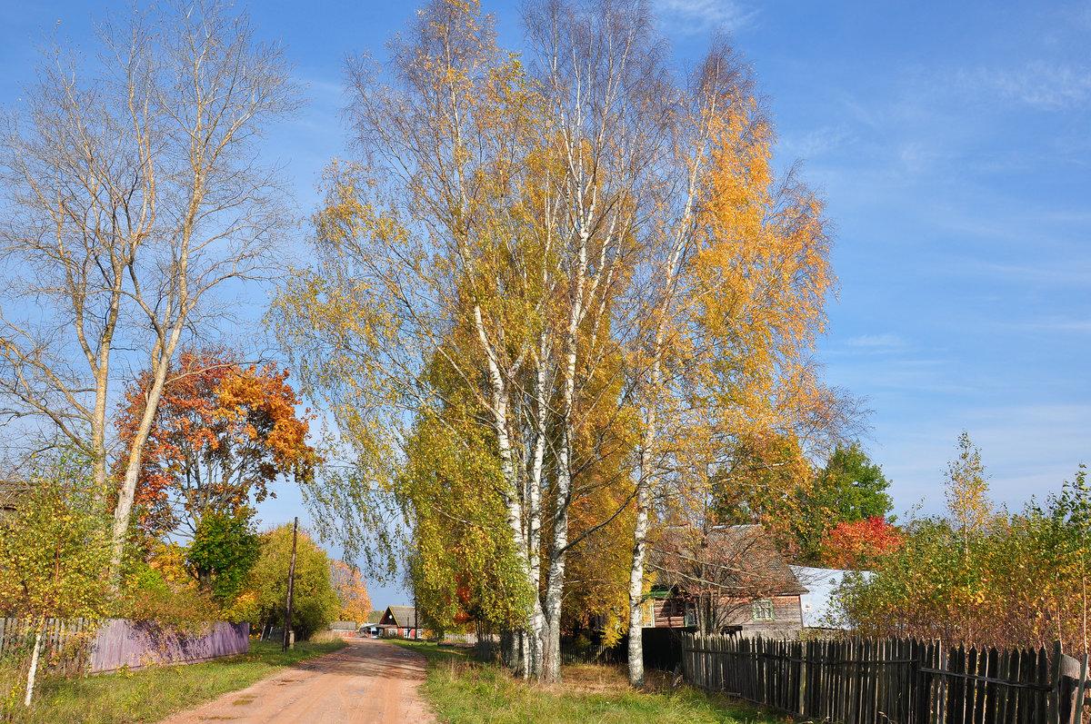 Картинки сельских улиц изумлением открыла