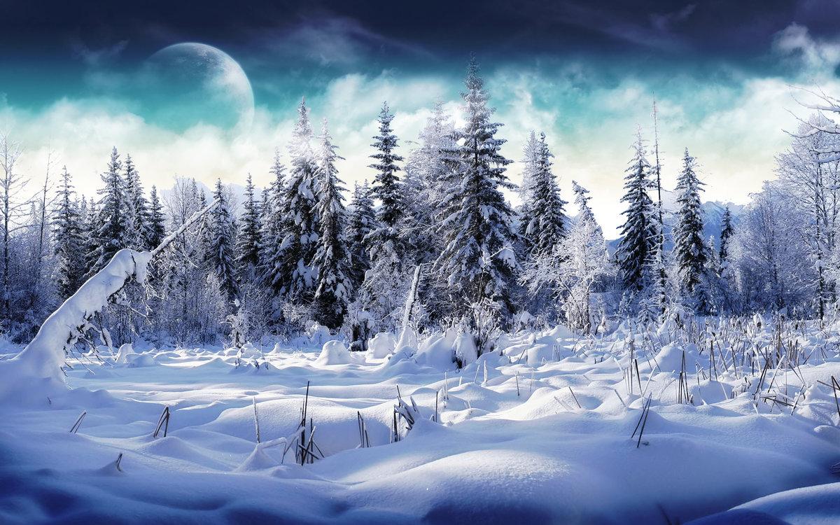 Картинки на телефон природа зима, для поднятия