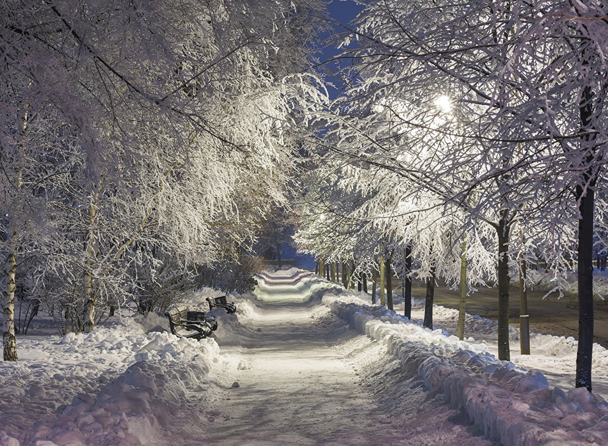 все достопримечательности зимний парк фотографии берег праву