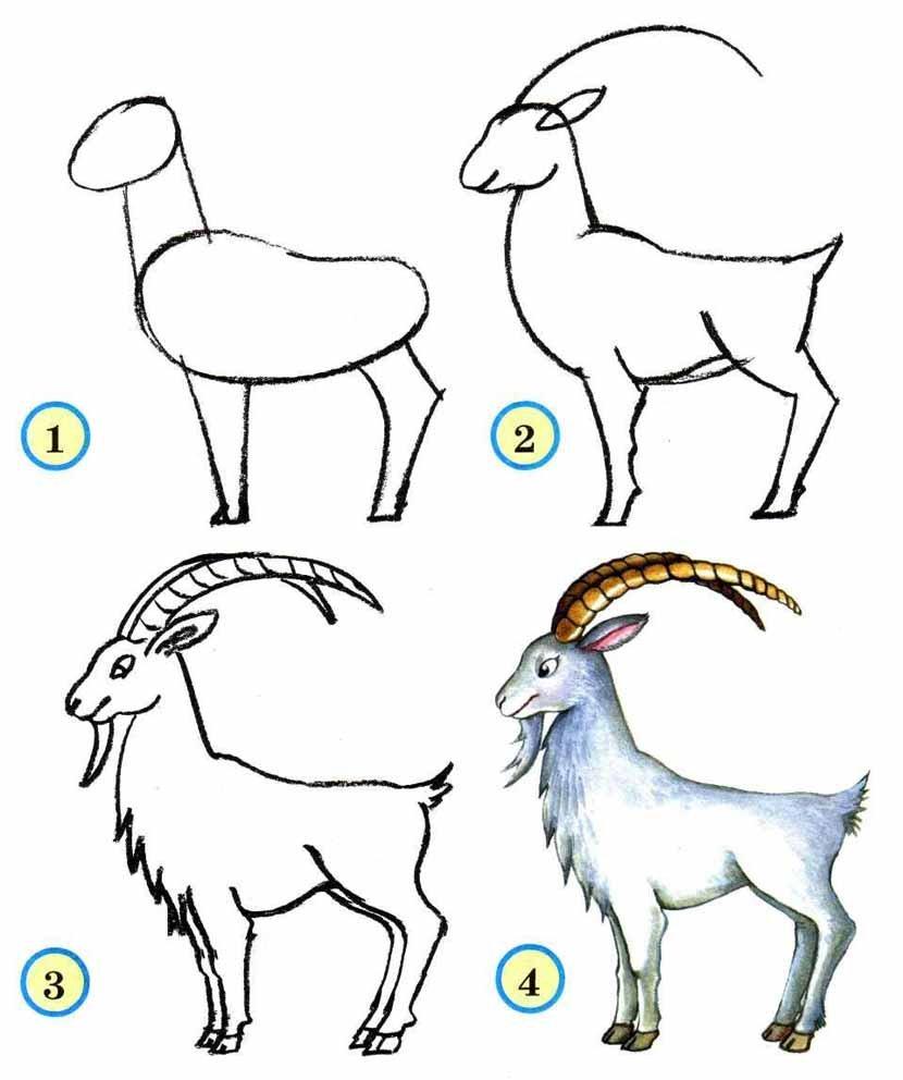 рисунки животных пошагово местные