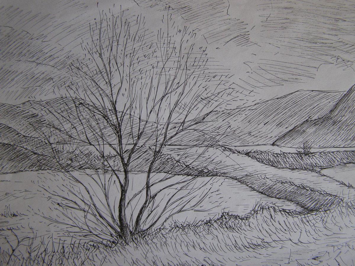 Рисунки простым карандашом пейзажи для начинающих