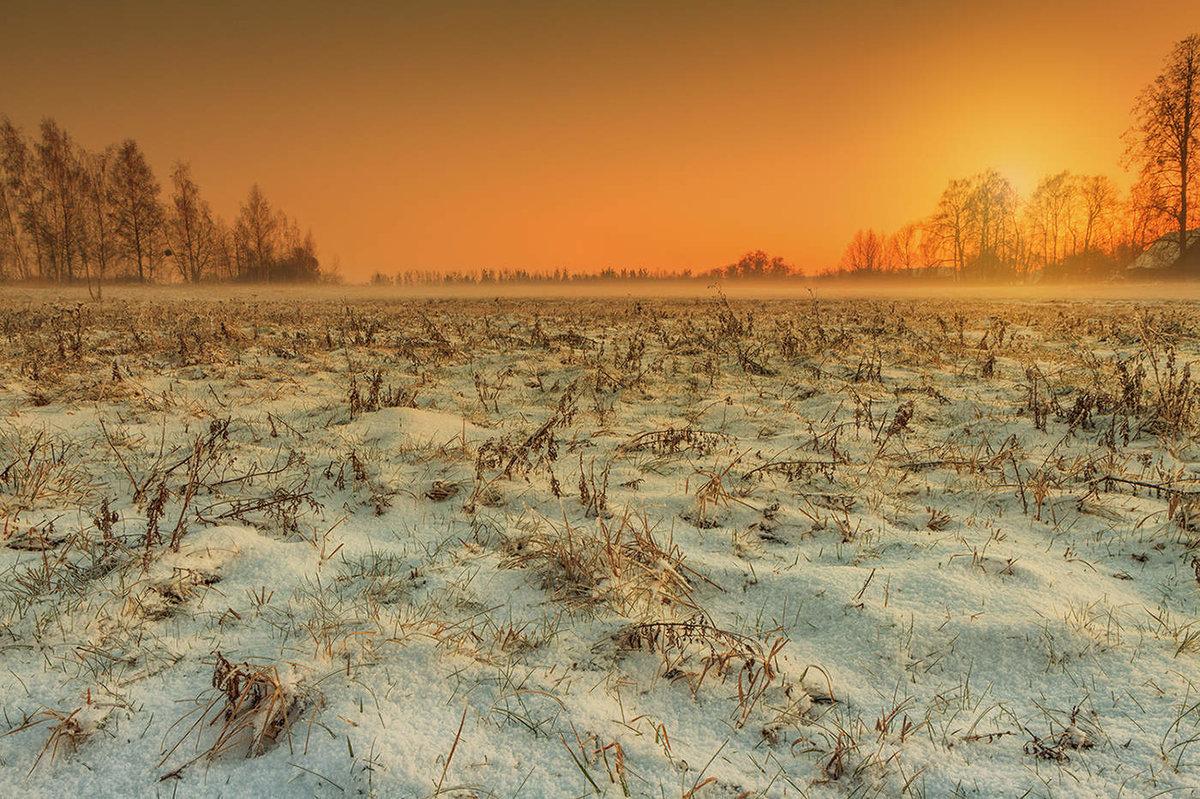 поля зимой фотографии тени углублениях стыках