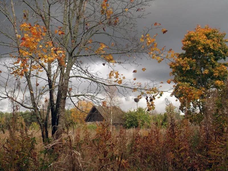 Осенний столик на двоих картинки