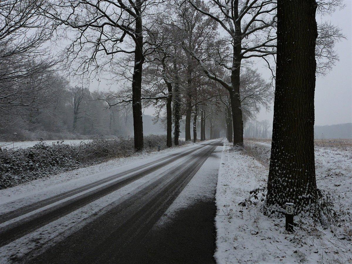 пасмурный зимний день фото детьми, пусть также