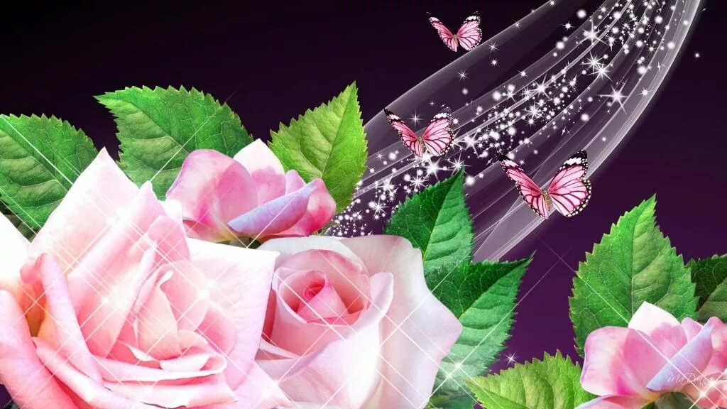 Открытки бабочки розы