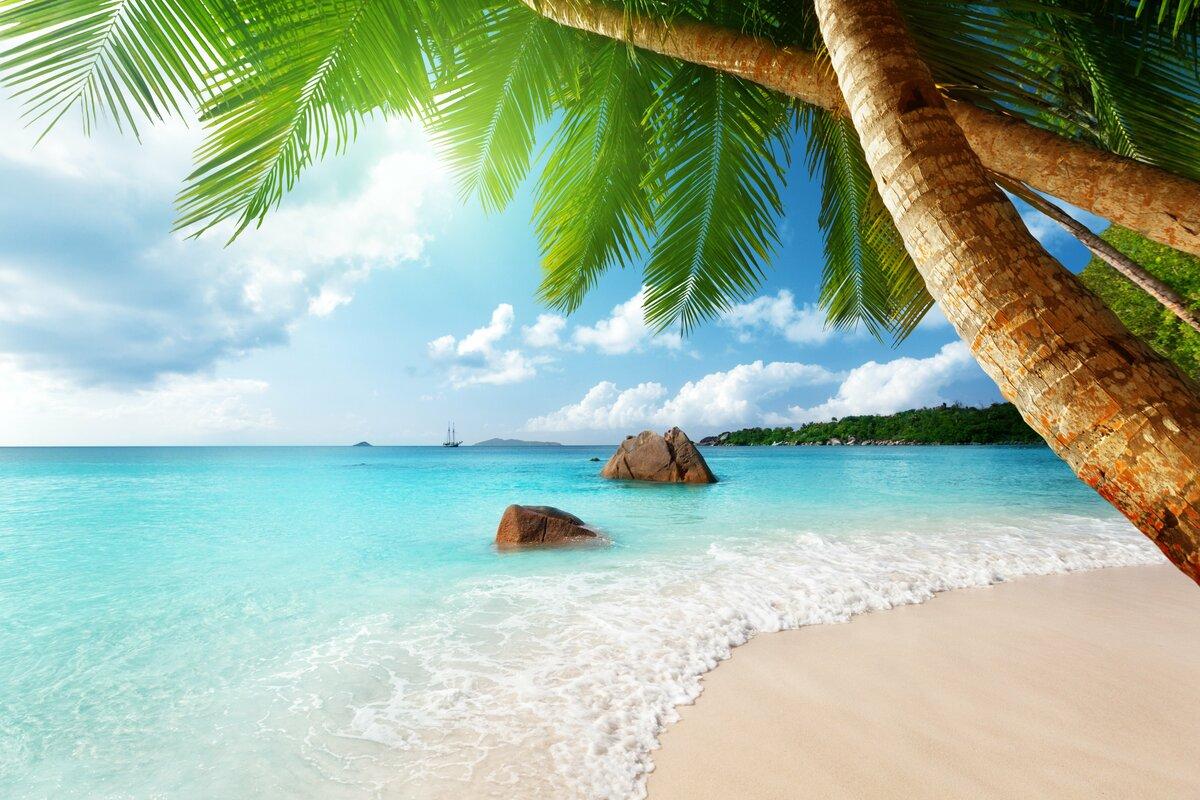 Подписания, лето фото красивые природа море