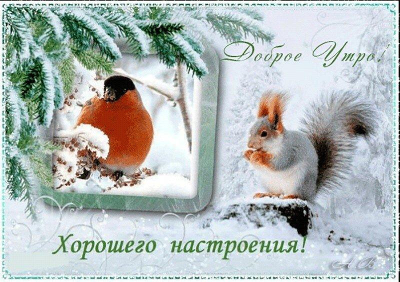 Надписью, открытки про хорошее зимнее настроение