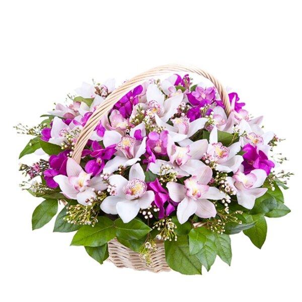Цветов, купить букет с орхидеями фото