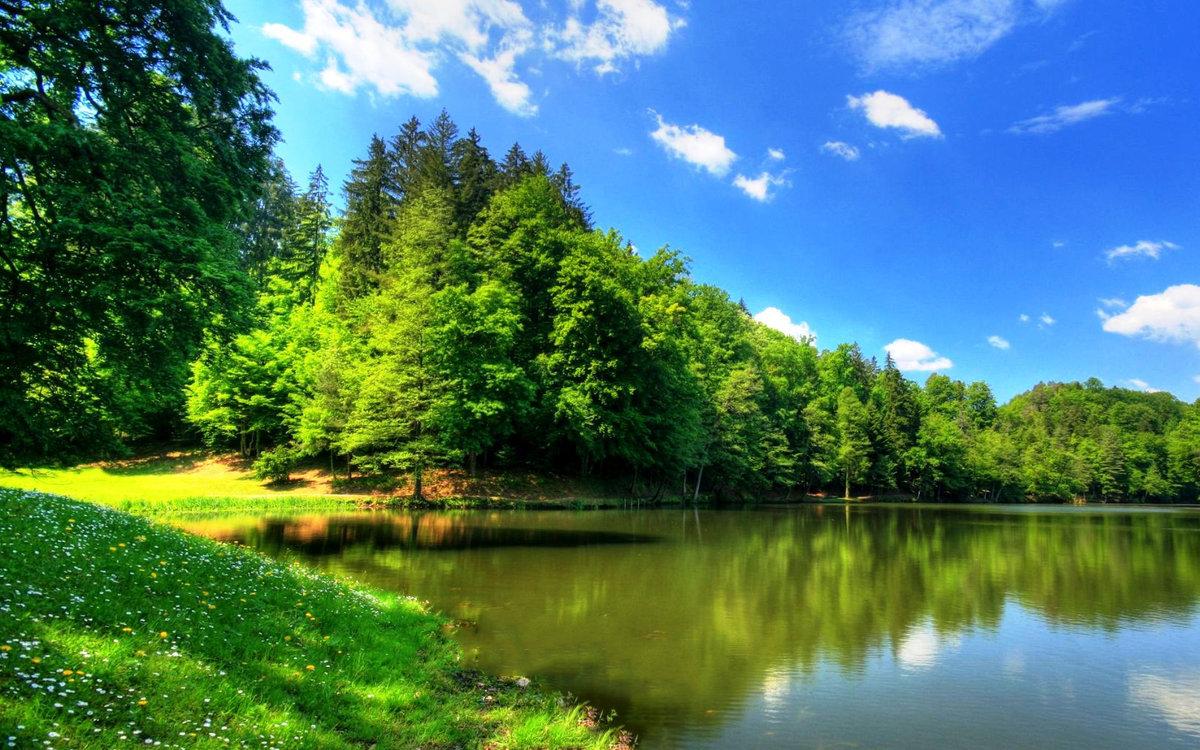Картинки природы красивые