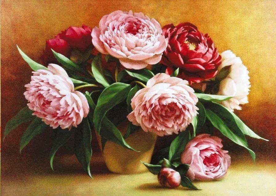 Букет пионов рисунок, уличной цветов