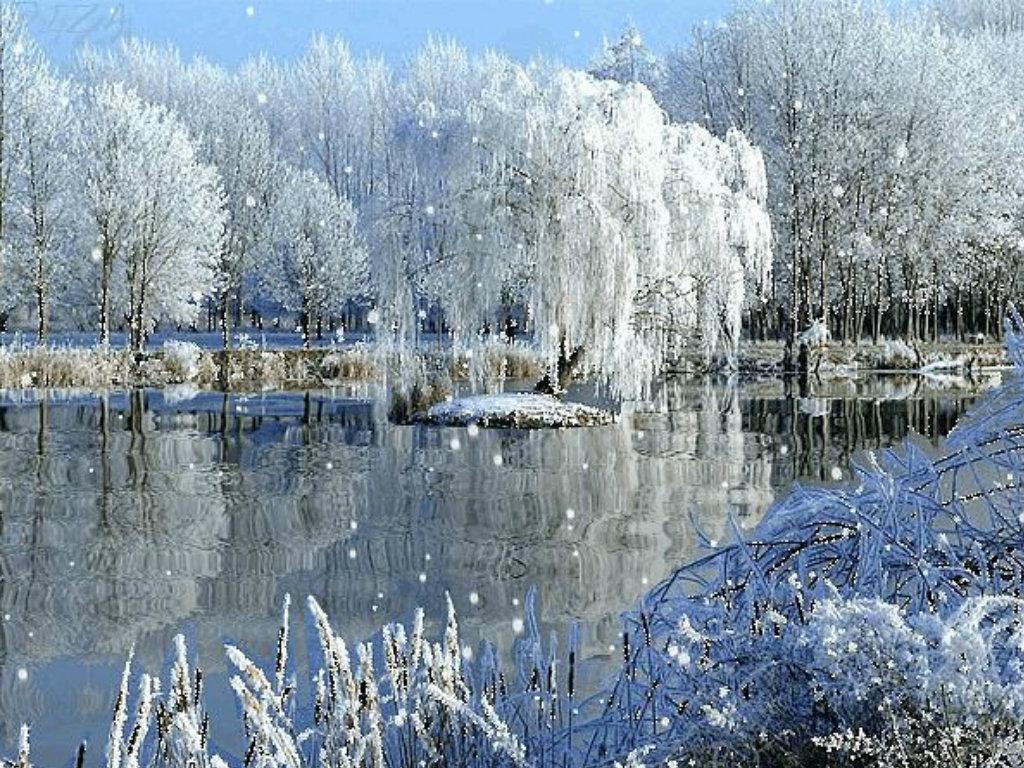 Картинка зима гифка, днем