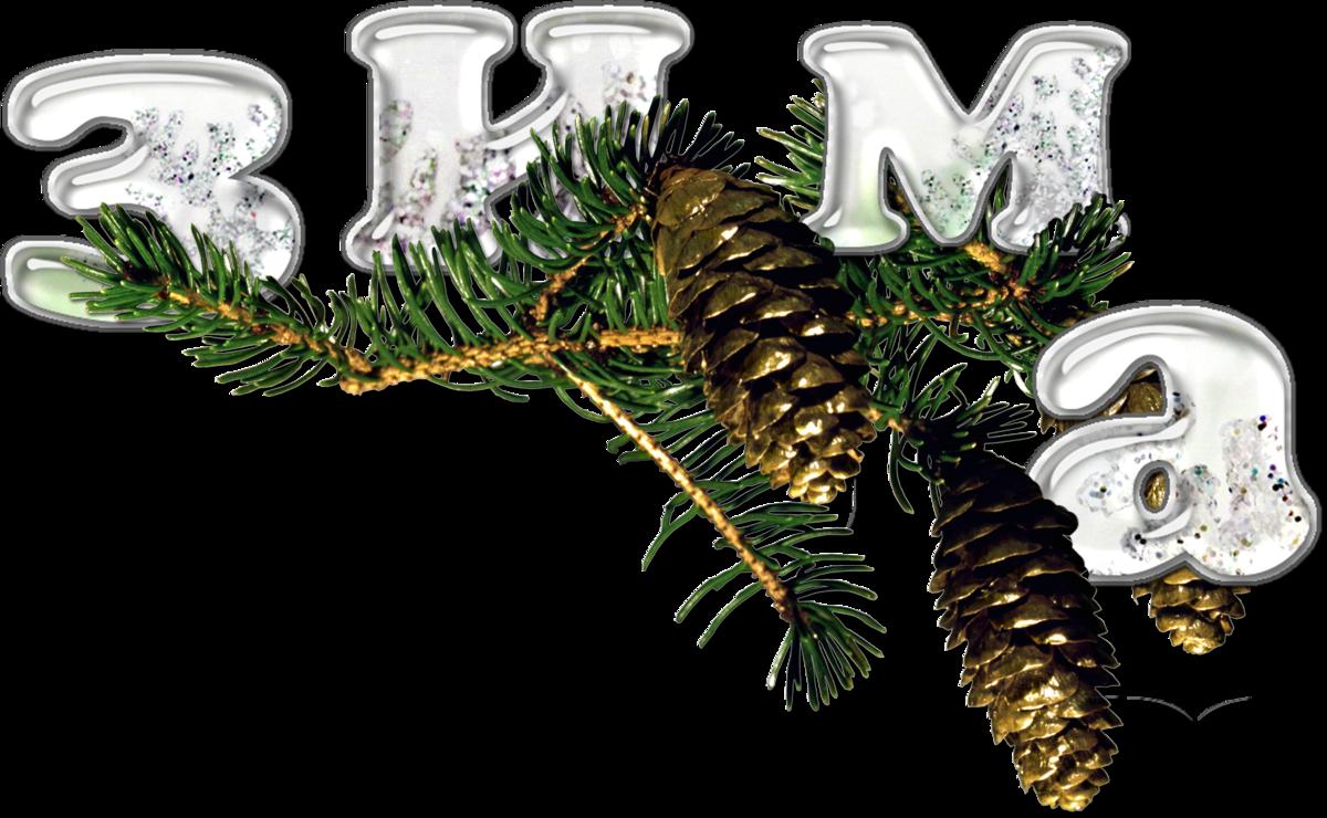 Рожденьем, картинки к новогодние зимние с надписями