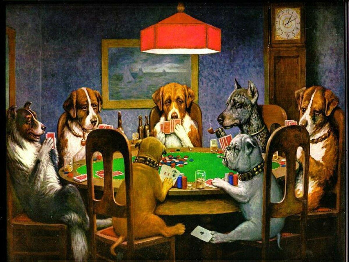 Где в карловых варах снимали казино рояль