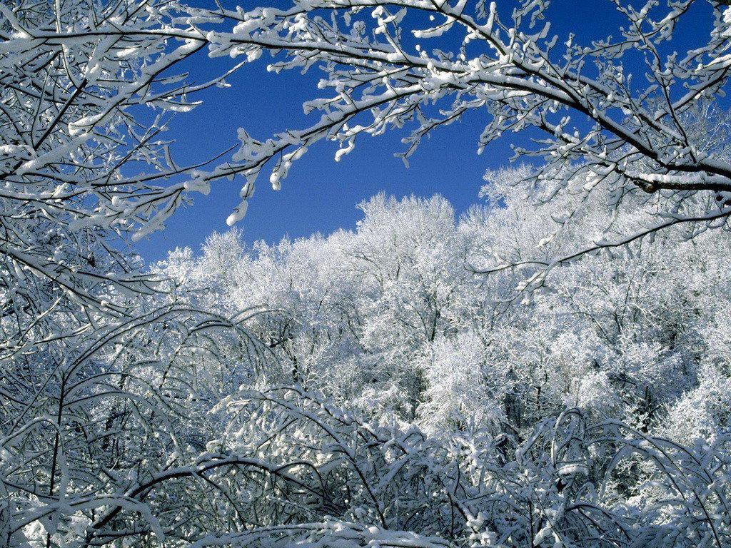 Красивая анимация картинки зима гиф