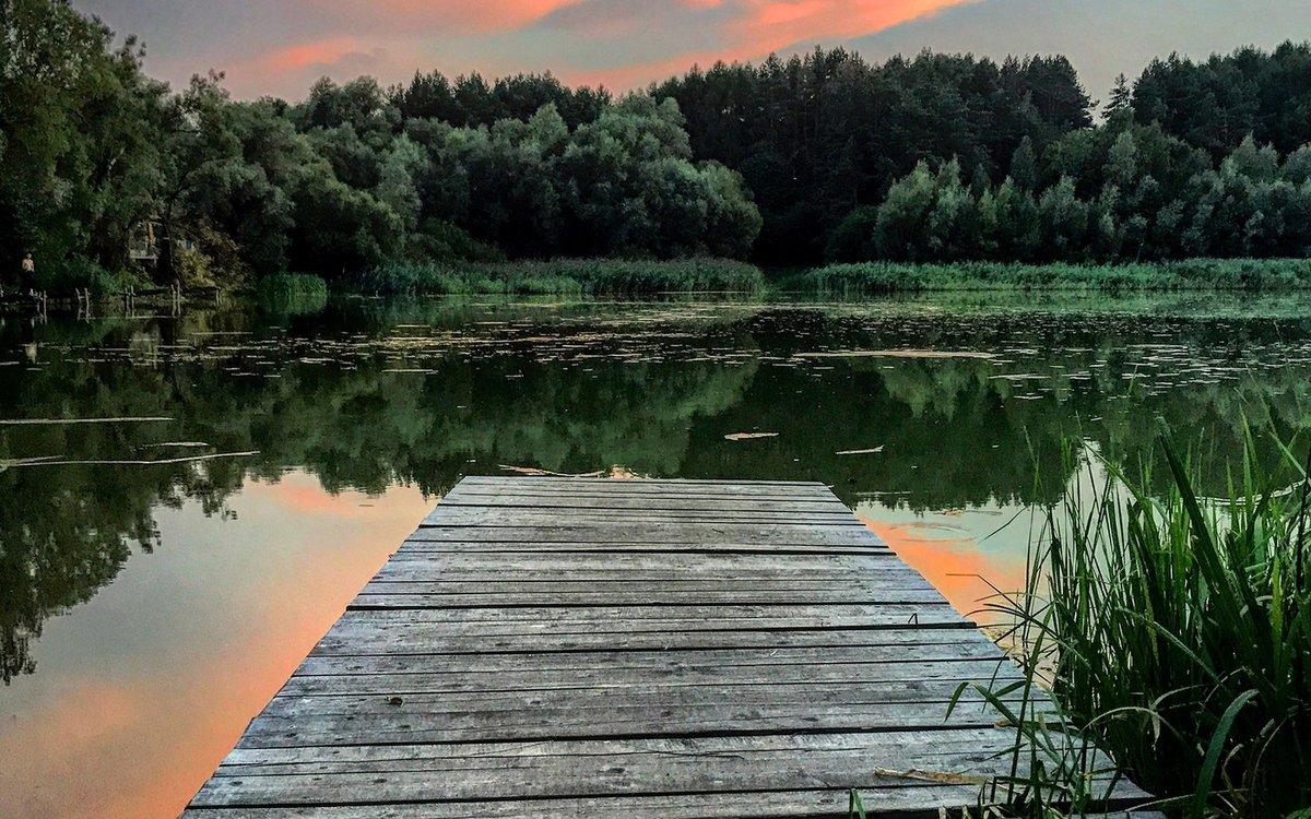 природа на озере деревня кусимово фото здесь