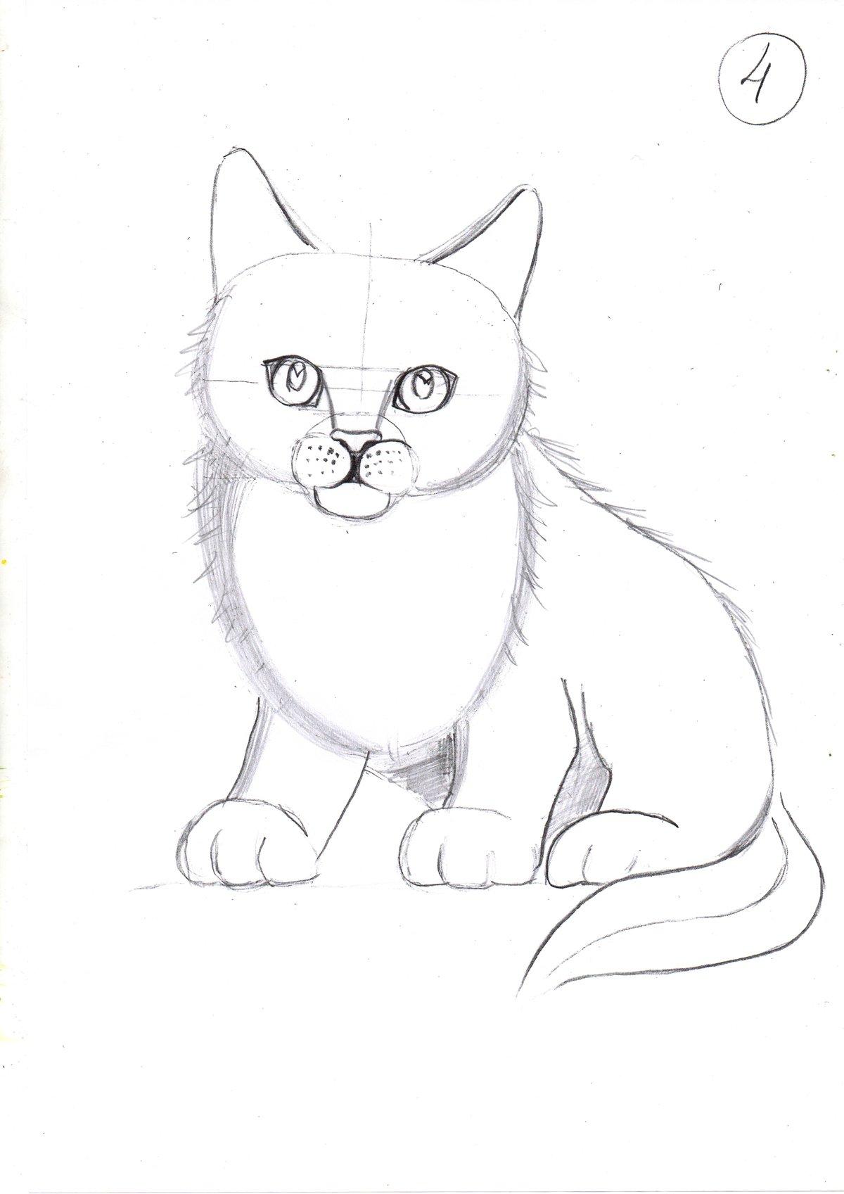 Рисовать рисунок животных легко