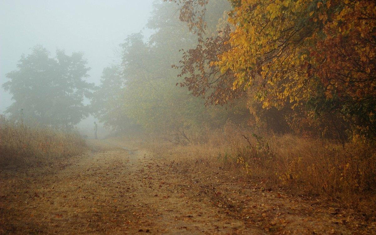 Туман представляет собой атмосферное явление, которое Ñарактеризуется образованием слоистого облака на земной поверÑности. Оно состоит из Ð¼ÐµÐ»ÑŒÑ‡Ð°Ð¹ÑˆÐ¸Ñ ÐºÐ°Ð¿ÐµÐ»ÑŒ воды или кристаллов льда.