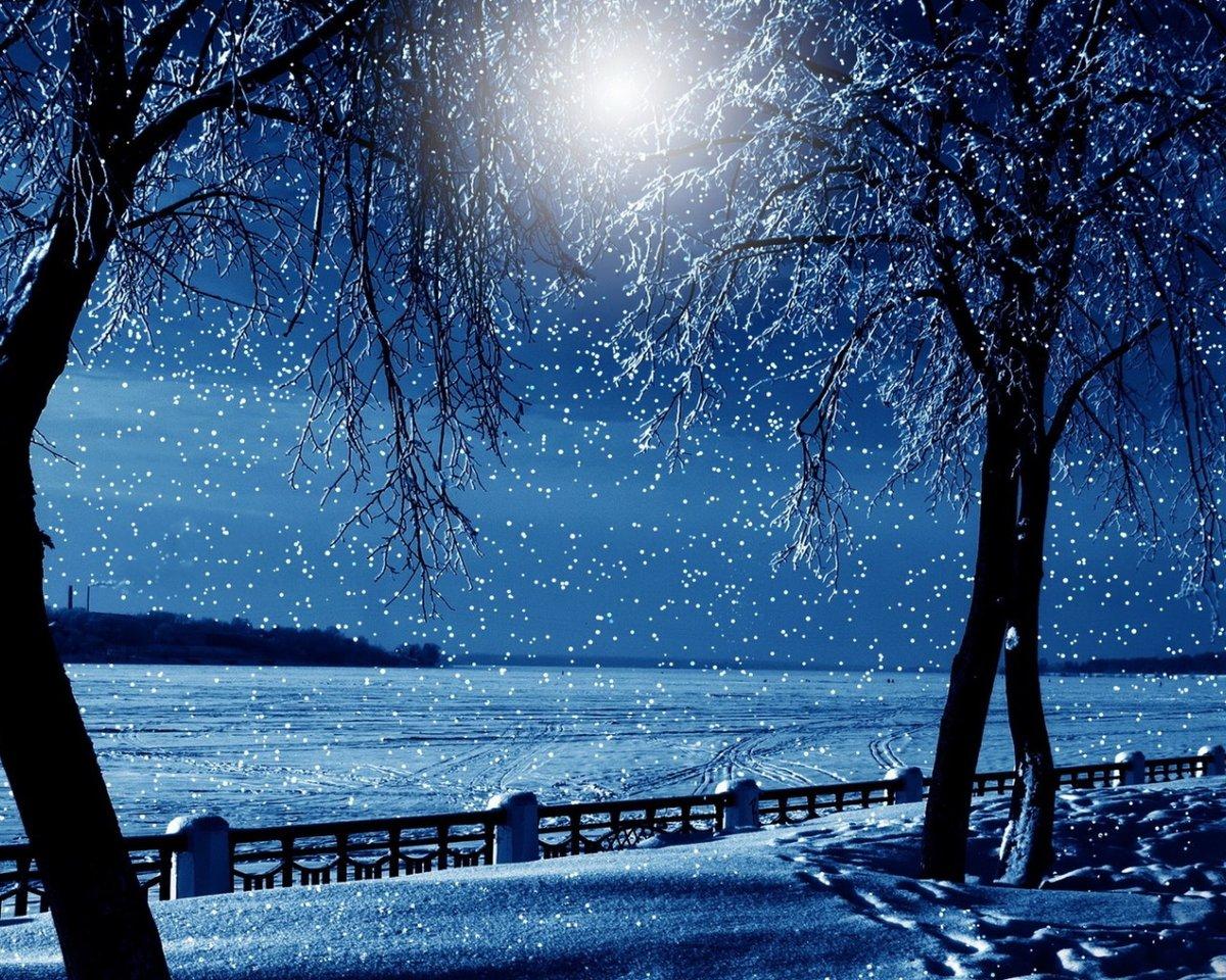 красивые картинки ночь зима снег тигго далеко премиальный