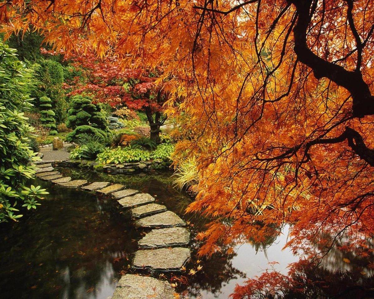 отъезда отца картинка осеннего сада бульвар, который растянулся