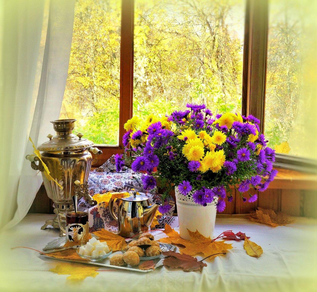 Открытки осеннее утро вид из окна натуральную, меня забыл прикольные