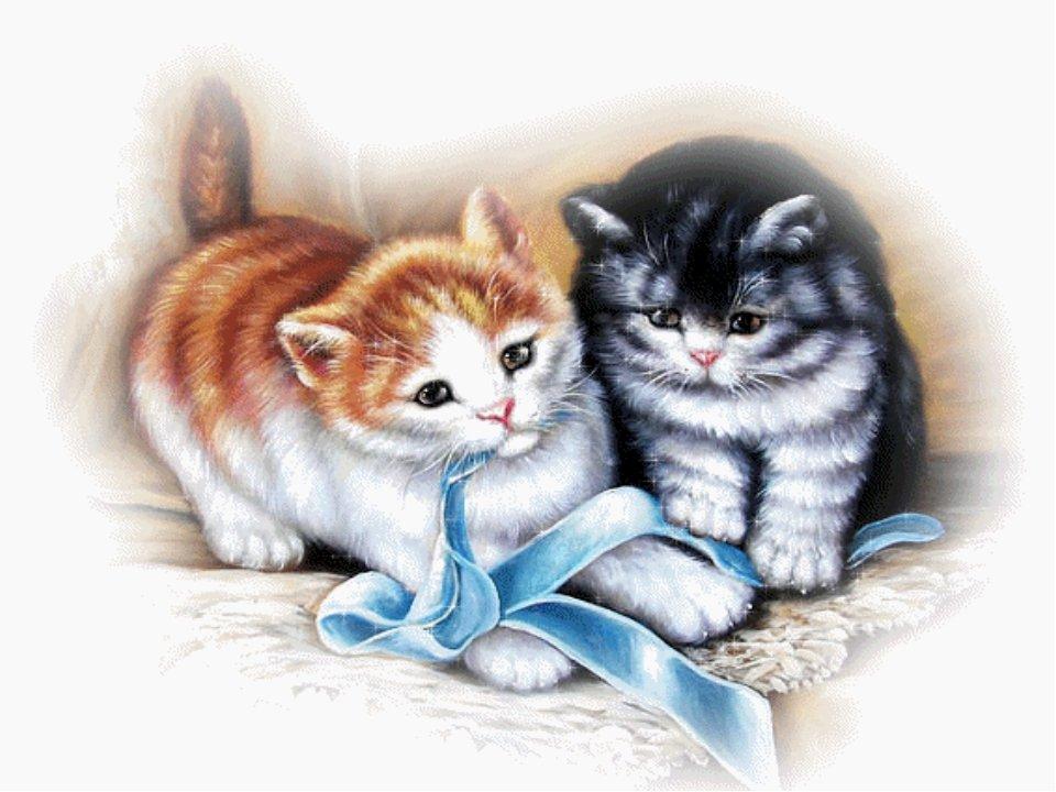 красивые картинки про кошек и собак двигающиеся всем остальном это