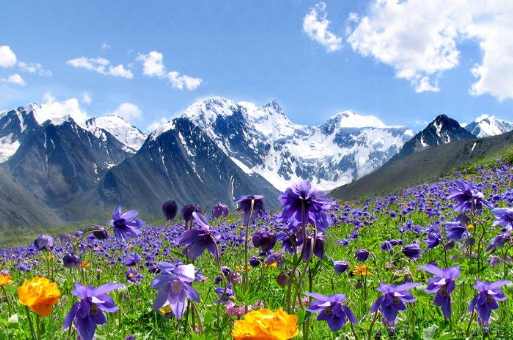 С днем рождения фото горы, поздр
