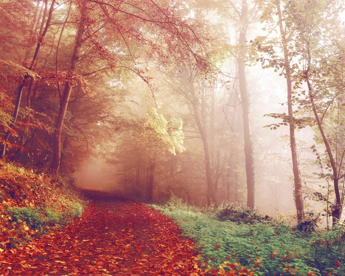 «Осенний мистический пейзаж»
