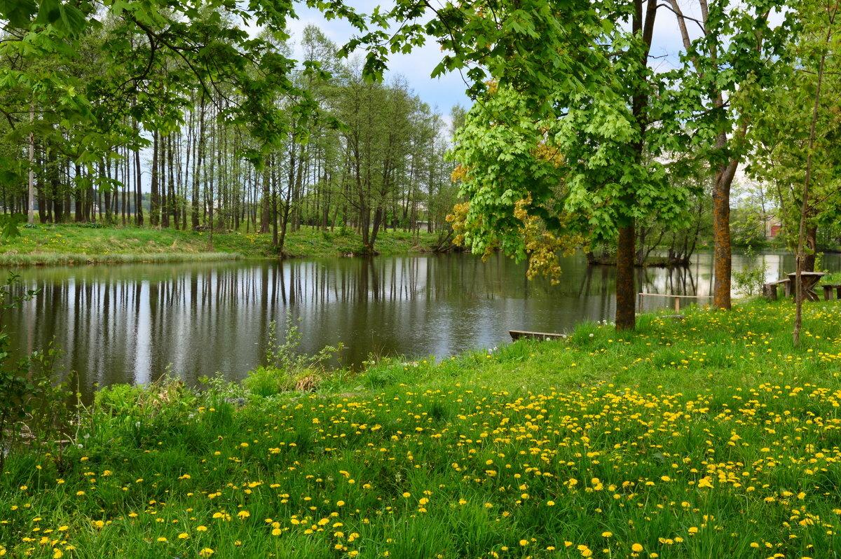 фото белорусская природа весной окраска представляет