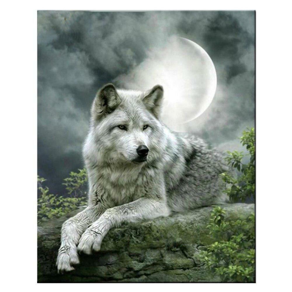 Море, одинокий волк прикольная картинка