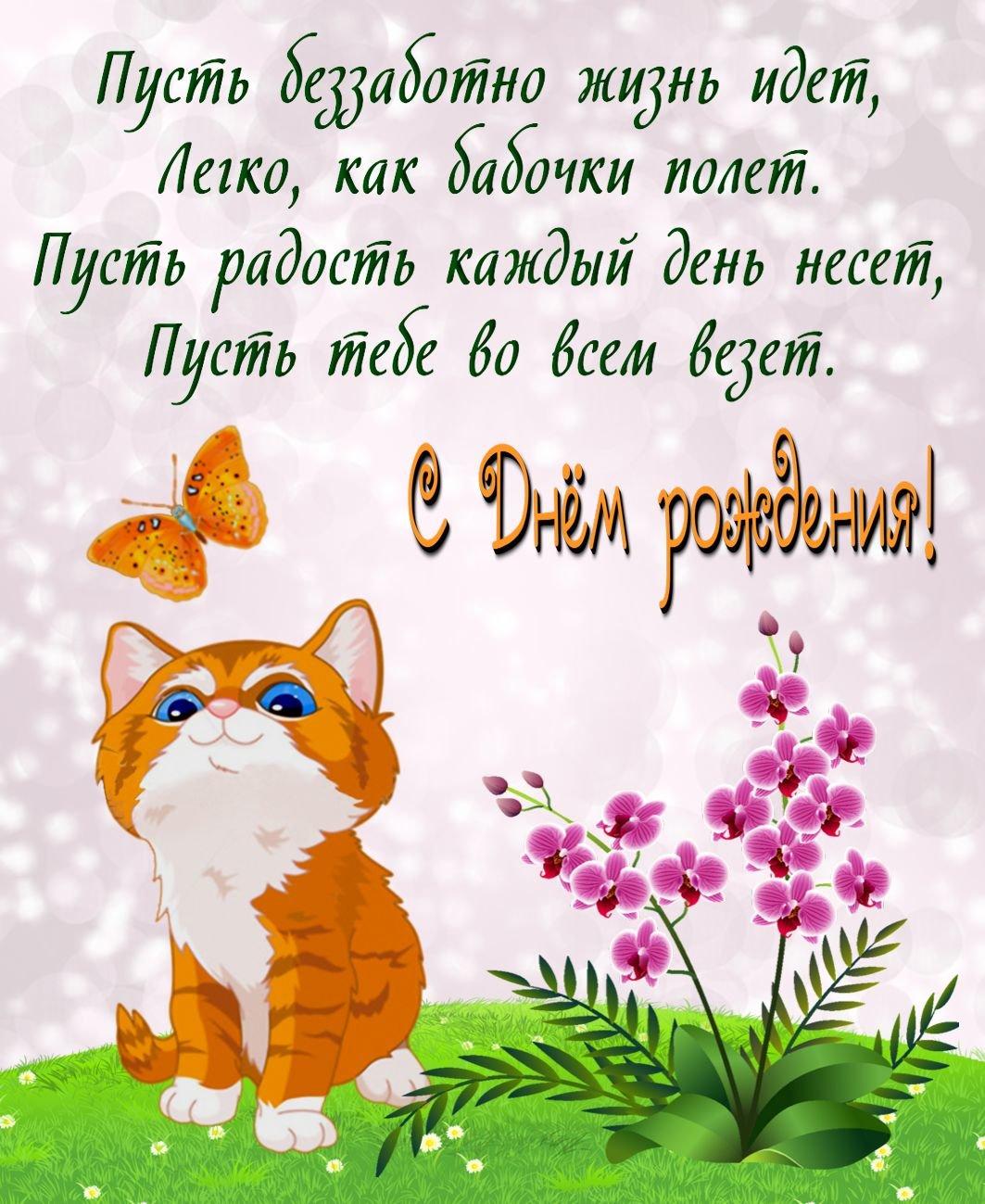 Открытки с котами поздравления с днем рождения, картинки для дедушки