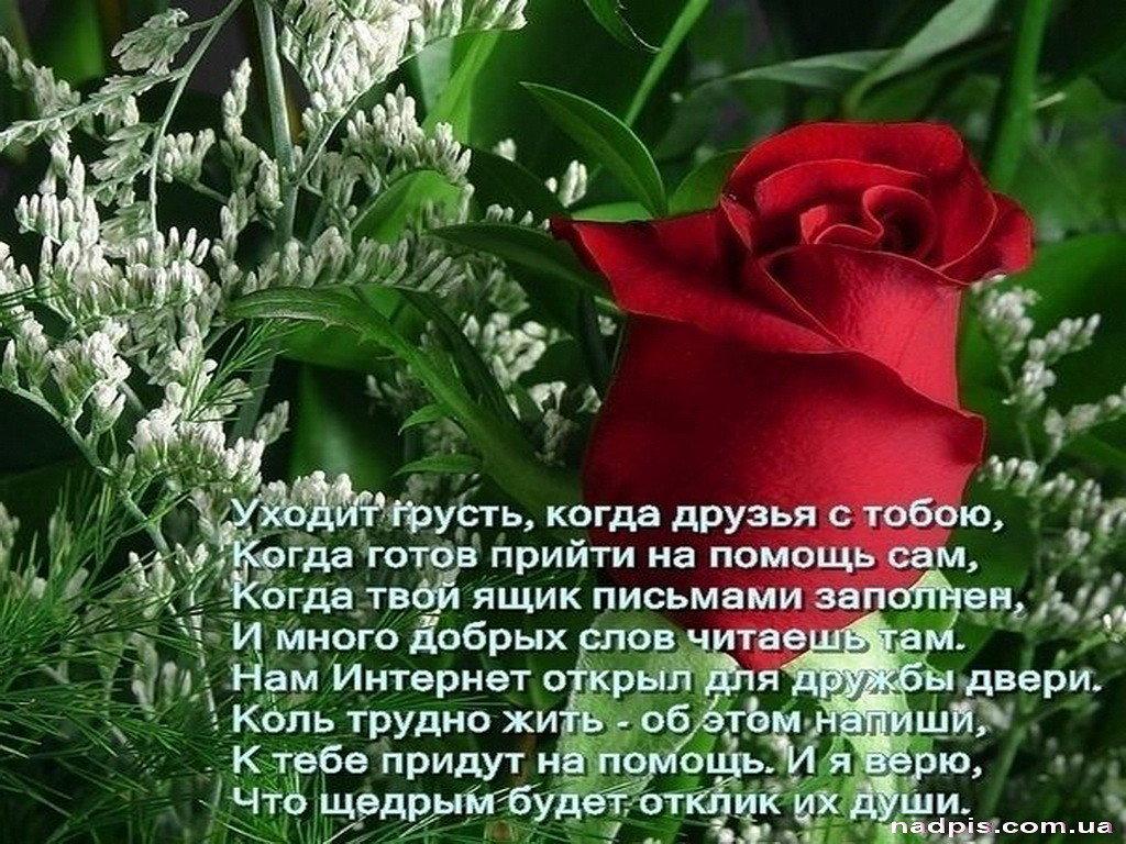 Поздравления стихи другу со смыслом