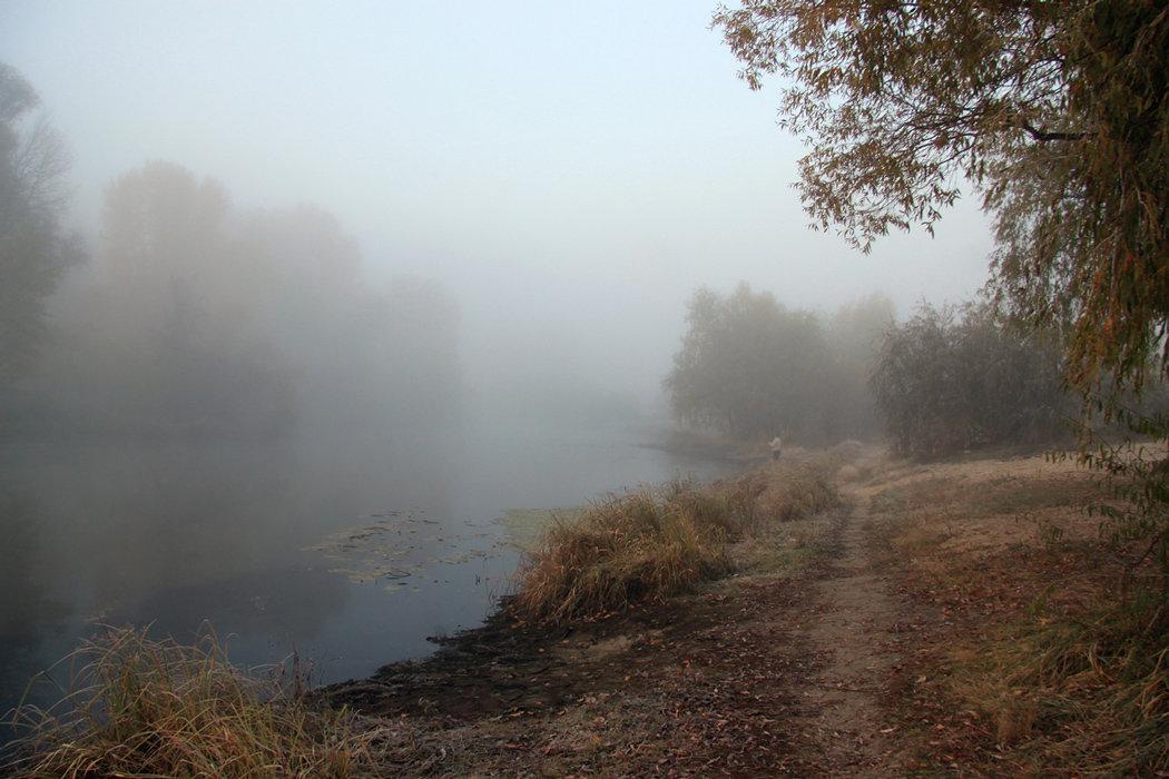 Часто, особенно осенью и зимой, над поверÑностью земли, рек, морей возникают туманы. Они могут быть и совсем незаметными, и такими плотными, что сквозь Ð½Ð¸Ñ Ñ'рудно что-либо увидеть.